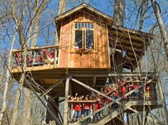 The Birdhouse, located in the Terrace Woodland, offers bird's-eye views of the surrounding natural landscape.