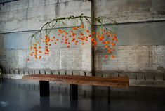 Branch installation | Why It Works Wednesday: Suspended Centerpieces & Hanging Decor http://storyboardwedding.com/wedding-suspended-centerpieces-hanging-decor/
