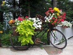 Flea market find to Rita's flower bike.