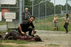 "The Walking Dead - Season 3, episode 7 ""When the Dead Come Knocking""."