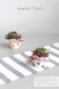make-this-succulent-gift.png (550×825)