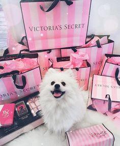 victoria's secret   Tumblr
