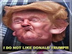I DO NOT LIKE DONALD TRUMP!!!