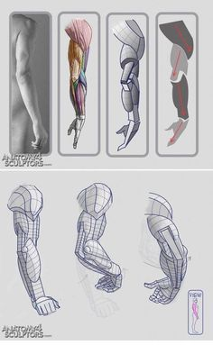 human anatomy reference for artists Anatomy Sketches, Anatomy Art, Human Anatomy Drawing, How To Draw Anatomy, Drawing Muscles, Human Body Drawing, Figure Drawing Reference, Anatomy Reference, Drawing Tutorials