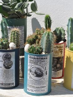the plante cans リメイク缶寄せ植えワークショップ