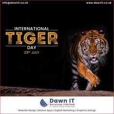 Web Application Development, Mobile App Development Companies, Web Development Company, Save The Tiger, Website Design Company, Mobile App Design, Digital Marketing, Scenery, Stripes