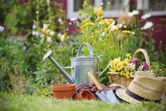 Prevent pain while gardening so you can continue enjoying and cultivating your beautiful yard.