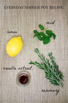 Everyday Simmer Pot Recipes