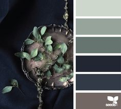 design seeds | still tones | for all who ♥ color