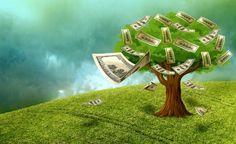 O que é valoração do capital natural? Parte 1