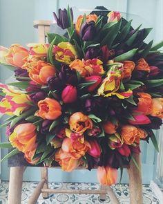 425 vind-ik-leuks, 5 reacties - Cherfold Flowers (@cherfoldflowers) op Instagram: 'Because she loves Tulips!'