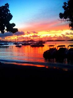 I loved, Loved, LOVED my trips to St. John in the U.S.V.I. So beautiful! :) Cruz Bay has the most beautiful sunsets.