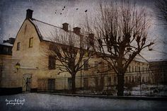 Barnängen by Kerstin Frank art, via Flickr