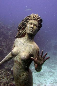 We saw this statue while diving in Grand Cayman. Great places to swim through the coral here. Underwater Ruins, Underwater Sculpture, Sculpture Art, Grand Cayman, Underwater Photography, Underwater Photos, Film Photography, Street Photography, Landscape Photography