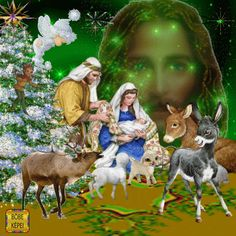 Merry Christmas Gif, Christmas Nativity, Christmas Greetings, Beautiful Love Pictures, Beautiful Gif, Animals Beautiful, Pictures Of Jesus Christ, Religious Pictures, Whimsical Christmas