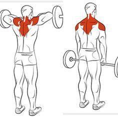 Shoulder & Traps Exercises Ejercicios de Hombro y Trapecios workouts for bodybuilders Fitness Workouts, Gym Workout Tips, Fitness Tips, Fitness Motivation, Lifting Motivation, Workout Men, Exercise Motivation, Bodybuilding Supplements, Bodybuilding Workouts