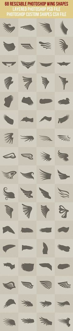 68 Photoshop Wing Shapes - Symbols Shapes