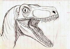 Images For > Dinosaur Velociraptor Drawing Animal Drawings, Cool Drawings, Drawing Sketches, Dinosaur Drawing, Dinosaur Art, Jurassic Park Raptor, Dinosaur Sketch, Dinosaur Tattoos, Halloween Drawings