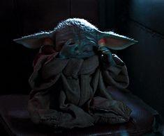 Yoda Gif, Yoda Meme, Yoda Funny, Ver Star Wars, Star Wars Baby, Star Trek, Yoda Pictures, Star Wars Pictures, Cuadros Star Wars