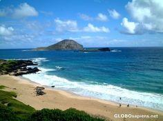 or I'll live here  Makapu'u beach Oahu HI