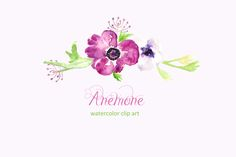 Anemone watercolor clip art by LABFcreations on @creativemarket