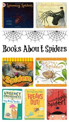 Learn about spiders