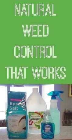 1 gal white vinegar, 2c epsom salts, 1/4 c dawn detergent.  spray and saturate weeds.