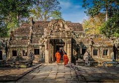 IDENTITYPLUS, #Cambogia