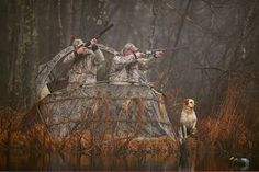 Duck House Waterfowl Blind: Blinds | Free Shipping at L.L.Bean Duck Hunting Blinds, Hunting Stands, Types Of Fire, Waterfowl Hunting, Duck House, Duck Blind, Hunting Guns, Game Birds, Senior Pictures