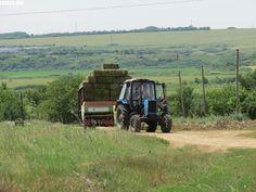 LANGEO.ORG: Заготовка сена. The hay.