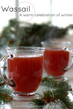 Wassail :: A warm celebration of winter Dont forget to add a delicious beverage to the holiday menu! Wassail :: A warm celebration Winter Drinks, Holiday Drinks, Holiday Recipes, Winter Recipes, Christmas Recipes, Holiday Punch, Winter Food, Non Alcoholic Christmas Drinks, Christmas Punch