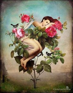 Christian Schloe: woman and roses