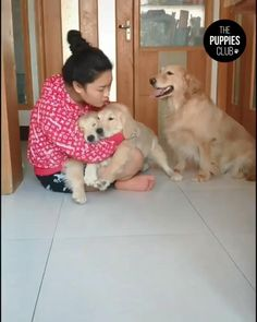 Cute Animal Videos, Funny Animal Pictures, Cute Animal Photos, Cute Funny Dogs, Cute Funny Animals, Cute Cats, Super Cute Animals, Cute Little Animals, Cute Dogs And Puppies