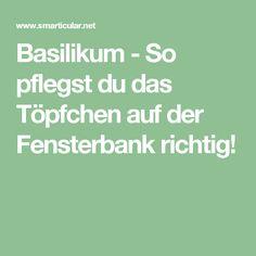 Basilikum   So Pflegst Du Das Töpfchen Auf Der Fensterbank Richtig!