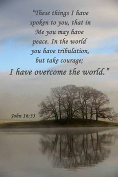 John 16:33 (KJV) These things I have spoken unto you, that in me ye might have peace. In the world ye shall have tribulation: but be of good cheer; I have overcome the world.