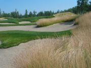 Bunker maintenance: where it's been, where it is and where it's going