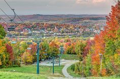 Sherbrooke city from the summit of Mt Bellevue ski resort in Autumn with colorful trees Canvas Art, Canvas Prints, Colorful Trees, Quebec, Architecture Design, Infographic, Autumn, Wall Art, City