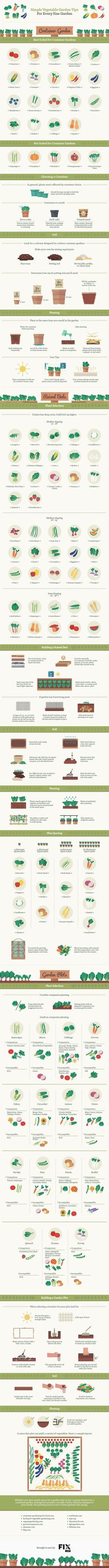 best Make Your Garden Grow images on Pinterest Vegetable