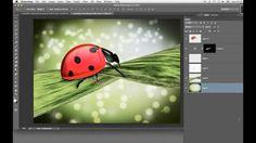 Ilustração - Otimize seu tempo com filtros especiais