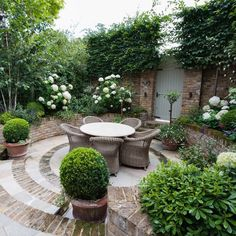 hortensien garten Congratulations to designer Karen Rogers krgardendesign who has passed stage one of the SGD adjudication process, the first stage to Small Courtyard Gardens, Back Gardens, Small Gardens, Outdoor Gardens, Backyard Ideas For Small Yards, Backyard Designs, Small Garden Design, Small Garden Plans, Garden Cottage