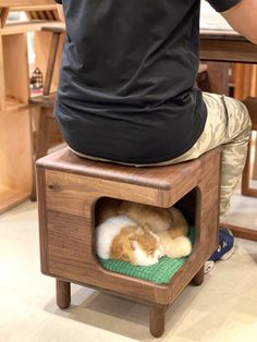 Cat House Diy, Cat House Plans, Diy Cat Bed, Pet Furniture, Cat Hacks, Cat Playground, Animal House, Cat Room, Animal Projects