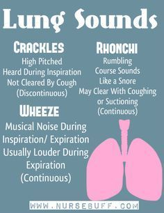 Nursing Mnemonics & Tricks (Assessment and Nursing Skills) Lung sounds to know for interpreting the medical appointments and exams related to breathing, breath sounds lungs, asthma, copd, etc Nursing School Notes, Nursing Career, Nursing Tips, Nursing Schools, Nursing Programs, Nursing School Humor, Lpn Programs, Pediatric Nursing, Icu Nurse Humor