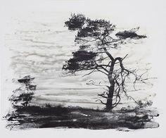 Lisa Strömbeck. Fotoemulsion på trä. The Last Trees. Utställning på Galleri Fagerstedt 5/10-11/11 2017