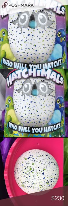 Hatchimals Toy These cute little fur animals are taking this Christmas by storm! Dragon Hatchimals for sale Other