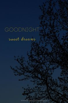 Goodnight, sweet dreams.