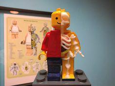 Muñeco Lego Esqueleto - Anatomía ThingsCreators.com