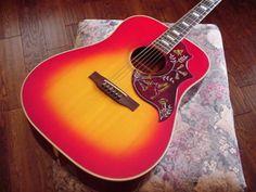 Hummingbird Acoustic