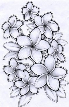 Drawing Of Hawaiian Flower Drawing Of Hawaiian Flower. Drawing Of Hawaiian Flower. Hawaiian Shirt Drawing Flower Necklace Tattoo Step by Pink in hawaiian flower drawing Drawing Of Hawaiian Flower Plumeria Drawing by Timchris with Images Tattoo Fleur, Hawaiianisches Tattoo, Leg Tattoos, Tattoo Drawings, Sleeve Tattoos, Symbol Tattoos, Necklace Tattoo, Shirt Drawing, Thai Tattoo