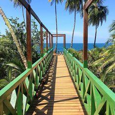 【whekau】さんのInstagramをピンしています。 《Costa Rica's Caribbean coast.  #caribbean #sea #palmtrees #sky #colors #blue #beach #vacation #landscape #nature #boardwalk #travel #tropics #costarica #небо #отпуск #пальмы #море #пляж #перспектива #путешествие #природа #пейзаж #костарика #海 #空 #ビーチ #自然 #風景 #コスタリカ》