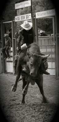 To ride a bull.. i know it sounds crazy but i want to. I prefer a small one tho